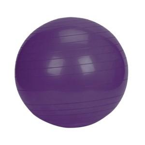Gymnastický míč PLATINIUM Classic 55 fialová